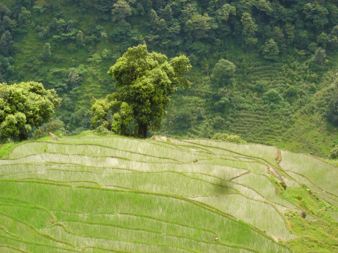 Tangting Trip july 2007 017